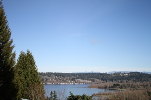 The view when standing with the tiger area to our backs, out over Lake Sammamish.
