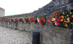 Flowers at the entrance to Concarneau, the walled city.